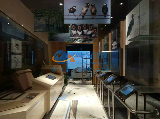 常德西洞庭湖鸟类展览馆项目现场2.jpg