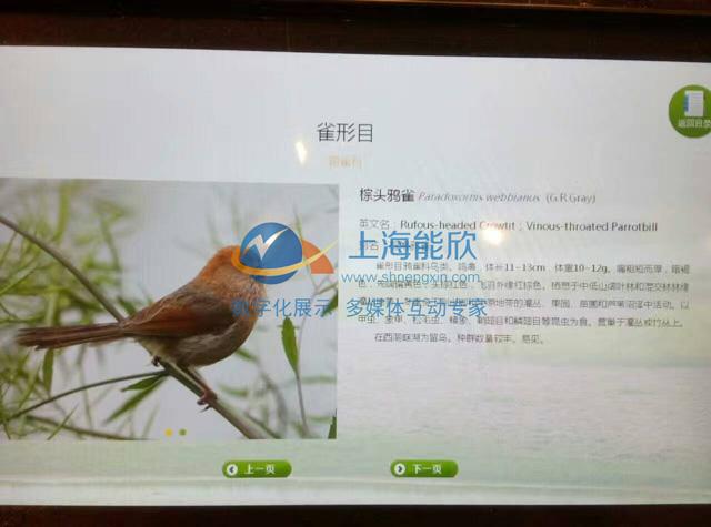 常德西洞庭湖鸟类展览馆项目现场6.jpg